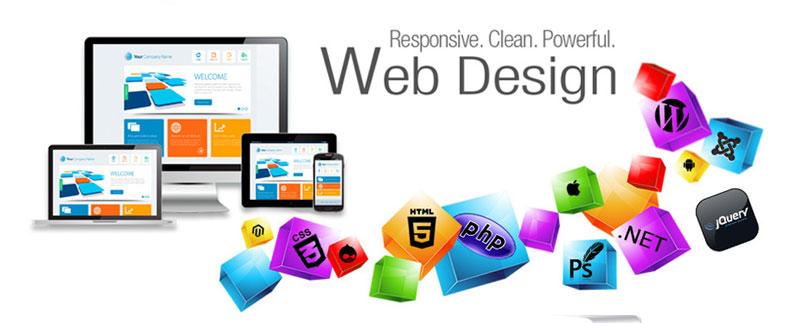 Seo Company In United States , Web Designer  In Usa