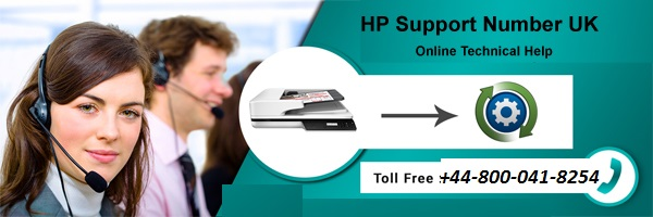 How to check network status on HP printer?