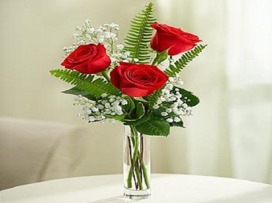 Florist Jacksonville – Spencers Florist Jacksonville FL
