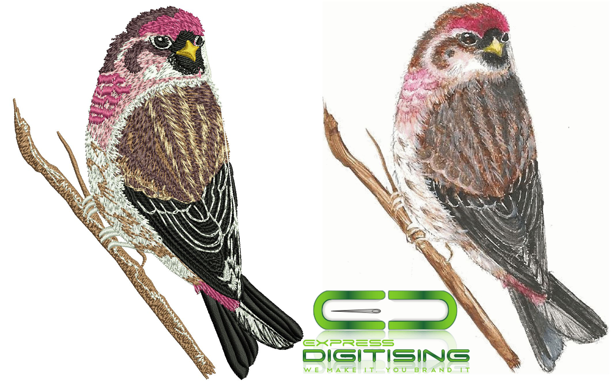 Embroidery Digitizing or Embroidery Digitizer in USA?