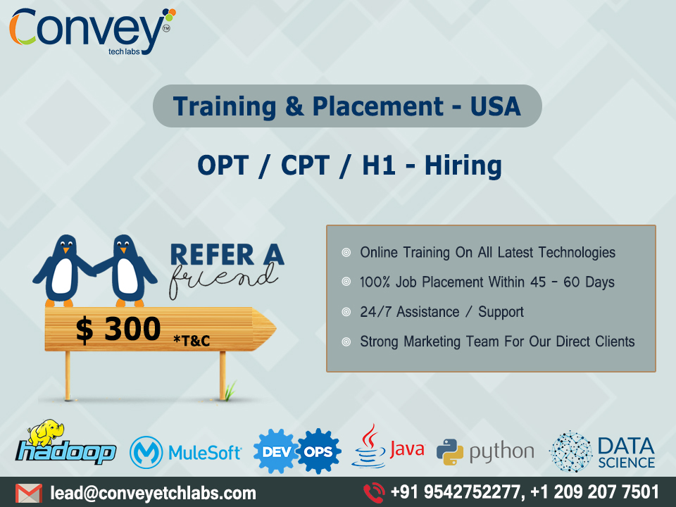 opt job opportunities in usa | convey tech labs