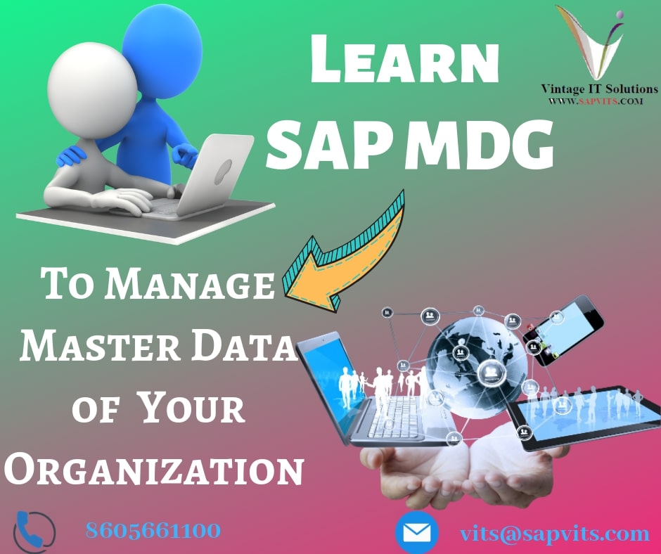 Best SAP MDG Training | SAP MDG Online Training For SAP Professionals | SAP MDG Course