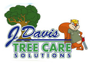 Tree Trimming Colleyville – Improve the health of your trees