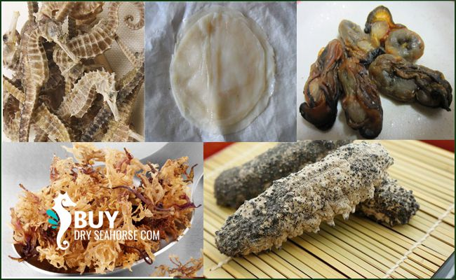 Contact us &  satisfy your taste buds with genuine dried seafood!