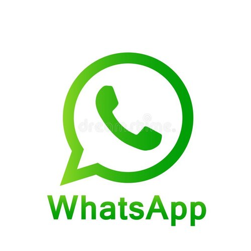 Send bulk whatsapp message